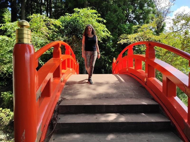 paisajes y puentes  hakone